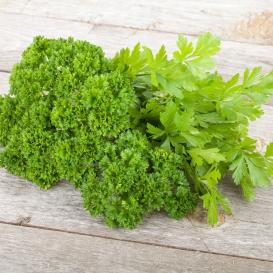 Bulk Parsley Seeds